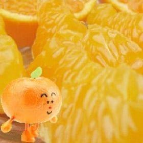 【2kg】愛媛県産 完熟はるみ 平均糖度14.5度! (ご自宅用)