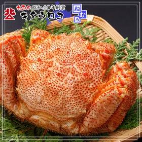【1kg】北海道産 特大 毛がに 1kg