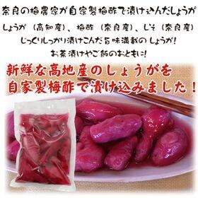【300グラム】無添加 高知県産 ・奈良の梅農家が自家製の梅...