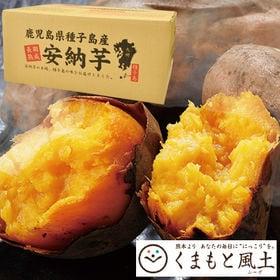 【1セット1kg】種子島産安納芋※家庭用(傷あり不揃い)