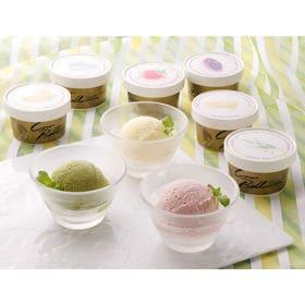 【12個セット 6種×2個】北海道 十勝カウベルアイス | 十勝の生乳を使用して作った濃厚アイスクリーム。十勝からご自宅へ直送します。