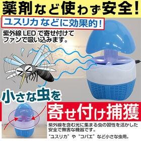 紫外線LED 小虫捕獲器(無薬品、煙や匂いも無く安心)