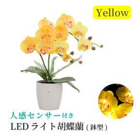 【イエロー】人感センサー付きLEDライト胡蝶蘭 鉢型