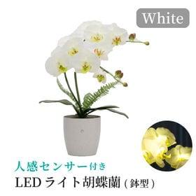 【ホワイト】人感センサー付きLEDライト胡蝶蘭 鉢型