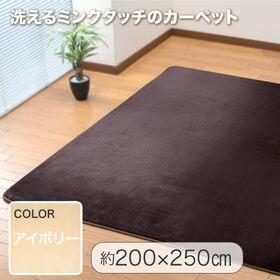 【200×250cm/アイボリー】洗えるミンクタッチカーペッ...