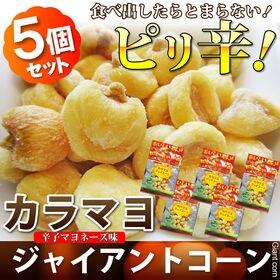 【計200g/40g×5袋】カラマヨジャイコーン 辛子マヨネ...