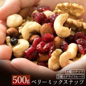 【計500g(250g×2)】恋するベリーミックスナッツ | 豊富な栄養と良質な脂質のナッツ!カリッと香ばしさの中に甘酸っぱいドライフルーツがベスト!