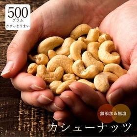 【500g】素焼きカシューナッツ