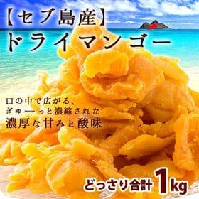 【1kg(500g×2)】お試しドライマンゴー