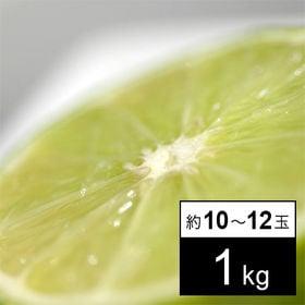 【1kg】フルーツ屋さんが選んだメキシコ産 ライム(約10-...