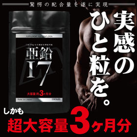 SUPPLEMENT for GENTLEMEN 亜鉛17 ...