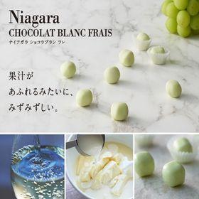 【計40個(8個入×5箱セット)】ナイアガラ ブランショコラ...