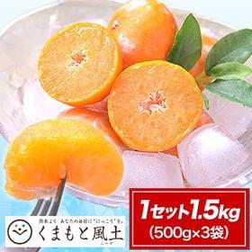 【1セット1.5kg(500g×3袋)】熊本県産小玉みかん使...