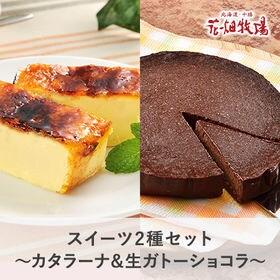 花畑牧場特製 濃厚スイーツ2種セット(濃厚生ガトーショコラ1...