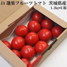 【1.2キロ*5箱】フルーツトマト 茨城県産 JA稲敷