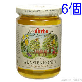 【6個】ダルボ アカシア ハニー(蜂蜜) 500g