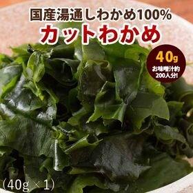 【40g】国産 乾燥カットわかめ | 海のミネラルたっぷり!肉厚ぷりっぷりで歯ごたえ抜群!味噌汁などいろんな用途に便利♪
