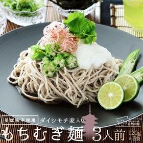 【3人前(120g×3袋)】もち麦麺