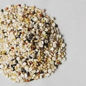 【大容量】国内産十六穀米【240グラム×3袋】\九州金のだし...