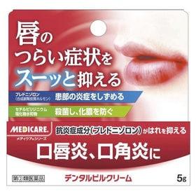 デンタルピルクリーム 5g 口内炎 口唇炎 口角炎(指定第2...
