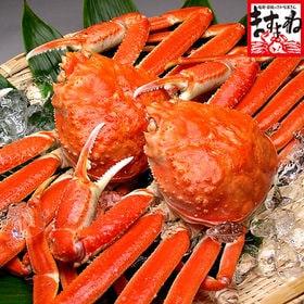 ボイルずわい蟹/姿1.2kg(600g前後×2匹)