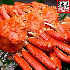 ボイルずわい蟹3kg/姿(良型600g前後×5匹入)