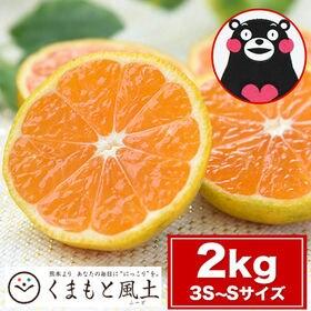 【1セット2kg 】熊本小玉みかん ※ご家庭用(傷あり サイ...