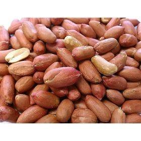 【500g】職人が手むきした 渋皮付き 煎りピーナッツ チャ...