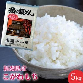 【5kg】新潟県産 こがねもち ≪令和元年度産≫