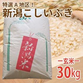 【30kg (30kg×1袋)】令和元年産 新米 玄米 大人...