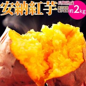 【2kg】種子島産 安納紅芋 長期熟成