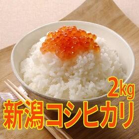 【2kg×1袋】令和元年産 新米 特選 新潟県産コシヒカリ