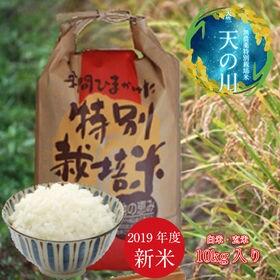 白米【10kg】無農薬特別栽培米「天の川」