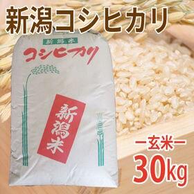 【30kg (30kg×1袋)】令和元年産 新米 玄米 特選...