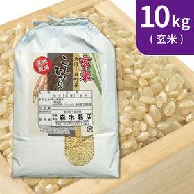 【10kg (5kg×2袋)】令和元年産 新米 玄米 魚沼十...