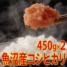 【450g×2袋】令和元年産 新米 魚沼十日町産コシヒカリ