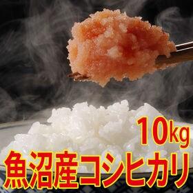 【10kg (5kg×2袋)】令和元年産 新米 魚沼十日町産...