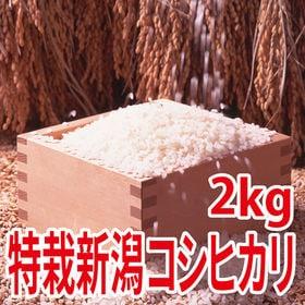 【2kg×1袋】令和元年産 新米 特別栽培米新潟県阿賀野産コ...