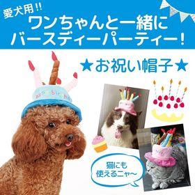 【ブルー】ドッグウェア ケーキ型 ハット