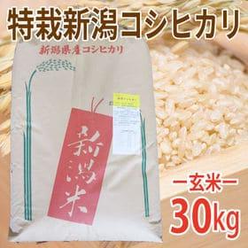 【30kg (30kg×1袋)】令和元年産 新米 玄米 特別...