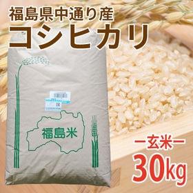 【30kg (30kg×1袋)】令和元年産 新米 玄米 福島...