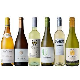 【6本セット】世界のシャルドネ 白ワイン