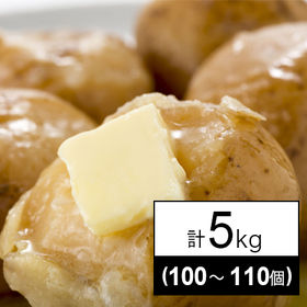 【5kg(100~110個)】北海道十勝産インカのめざめ
