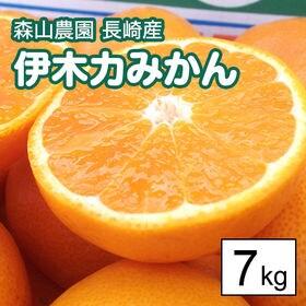 【7kg箱】森山農園 長崎産伊木力みかん