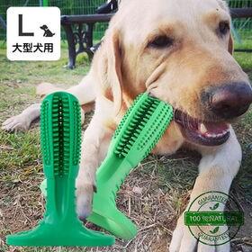 犬用歯ブラシ 大型犬用