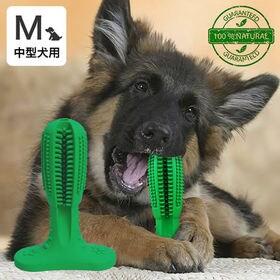 犬用歯ブラシ 中型犬用