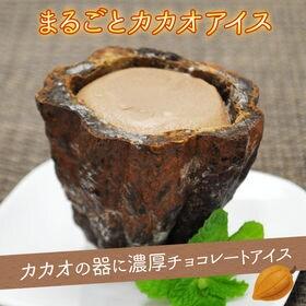 【3個セット】まるごとアイス カカオ