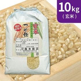 【10kg (5kg×2袋)】令和元年産 玄米 特別栽培米山...