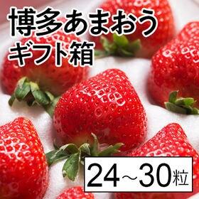【予約受付】12/10から順次出荷【24-30粒(ギフト箱)...