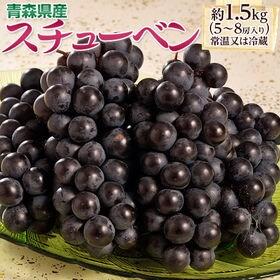 【計1.5kg(5~8房)】お試し葡萄セット♪青森県産 黒ぶ...